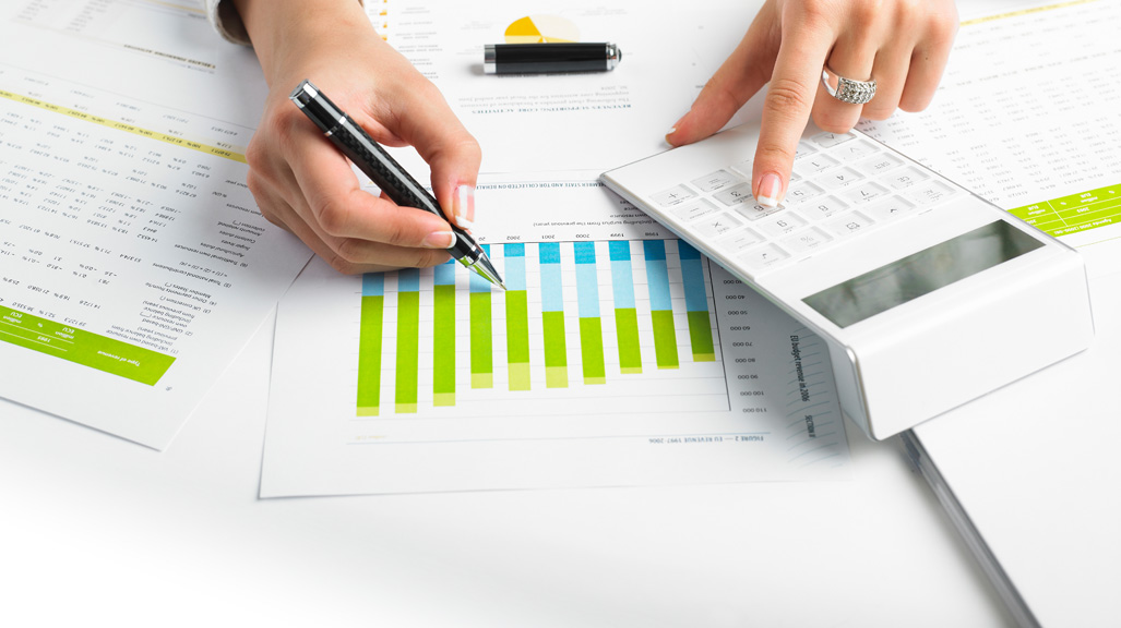Budget & Accounting System (BAS)